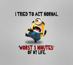 "Just try these ""Top Funny Minions Whatsapp DP"" for getting laugh.if you read out these ""Top Funny Minions Whatsapp DP"" then you got a happy and hilarious day. Funny Minion Memes, Minions Quotes, Funny Jokes, Hilarious, Funniest Jokes, Funny Gifs, Funny Dp, Minion Humor, Gym Memes"