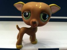 Littlest Pet Shop--chihuahua!