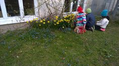 Vårblommor 2015-04 Nature, Activities, Projects, Nature Illustration, Off Grid, Mother Nature