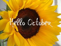 Good morning, yes it's October one of my favorite months. May we all have a wonderful day many Blessings for all but overall, hit me with more surprises. In love with life and HAPPY ♥♥ Hello September Quotes, Hello October Images, Happy New Month Quotes, October Pictures, Happy October, Fall Pictures, October Born, Welcome October Images, Seasons Months