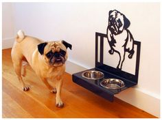 Designer hanging feeder for your beloved pug Pug Rescue, Pug Mug, Pugs And Kisses, Pet Bowls, Pug Love, Dog Houses, Dog Art, Fancy, Dog Stuff