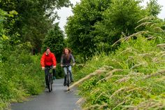 National routes National Cycle Network Wales