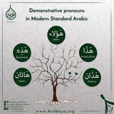 09 Quick Arabic Grammar Lessons #learnarabicactivities