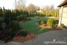 Ogród mały, ale pojemny;) - strona 57 - Forum ogrodnicze - Ogrodowisko