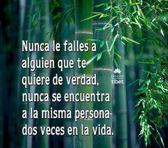 Nunca le falles a alguien …………………..