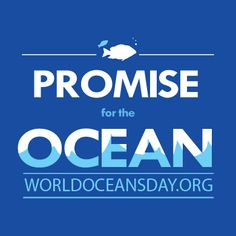 World Oceans Day! Celebrate by making a promise to help keep our oceans healthy. Remember, even a small fish can make a whale of a difference!