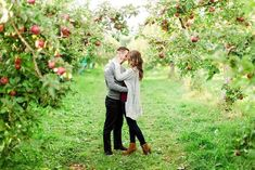 When Stephanie and Alex told us they wanted to have their engagement photos done. Poses Country, Country Couples, Romantic Couples, Engagement Pictures, Engagement Shoots, Fall Engagement, Country Engagement, Apple Orchard Photography, Couple Photography
