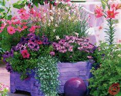 Attractive Il Giardino In Una Fioriera, 3a Parte: Lu0027abbinamento Dei Vasi E Delle