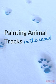 Such a fun and simple winter activity for kids of all ages! | Wilder Child