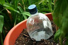 Food Storage Recipes and Food Storage Videos: Pop Bottle Drip Irrigation System
