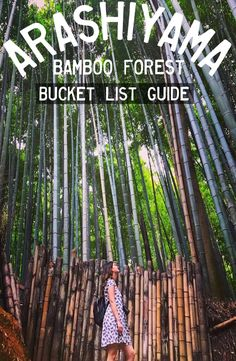 Kyoto's Arashiyama Bamboo Forest is located in western part of Kyoto near the base of the Arashiyama Mountains. How to get to Arashiyama Bamboo Forest Travel Guides, Travel Tips, Book Corners, Group Travel, Kyoto Japan, Yoga Retreat, Winter Garden, Backpacking, The Good Place