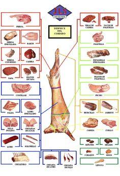 cortes de carniceria cordero españa - Buscar con Google