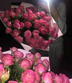 All Flowers, Beautiful Flowers, Look Kylie Jenner, Flower Aesthetic, Garden Planning, Life Is Beautiful, Holiday, Plants, Pink