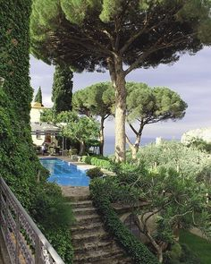 Cote d'Azur Provence - France - garden with pool-Gorgeous Beautiful World, Beautiful Gardens, Beautiful Places, Beautiful Beautiful, House Beautiful, The Places Youll Go, Places To Visit, Travel Aesthetic, Aesthetic Photo