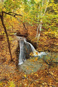 Niobrara Valley Preserve, Nebraska. Spring water falls over bedrock in a cascade on Big Cedar Creek near the Niobrara River.