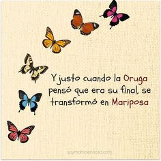 Y justo cuando la Oruga pensó que era su final, se transformó en Mariposa. And just when the caterpillar thought it was her end, she transformed into a butterfly. Positive Phrases, Motivational Phrases, Positive Quotes, Positive Vibes, Inspirational Quotes, Positive Mind, More Than Words, Spanish Quotes, Wise Words