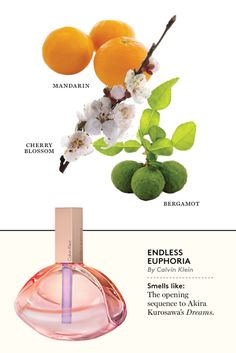 What's New at the Olfactory: 32 New Fragrances for Spring Endless Euphoria Perfume Scents, New Fragrances, Perfume Bottles, Endless Euphoria, Perfume Recipes, Essential Oil Perfume, Perfume Collection, Smell Good, Jars