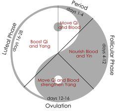 menstrual health chinese medicine - Google Search