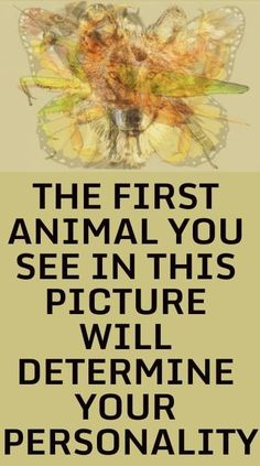 """Your personality has different """"statistically-identified factors"""" included in the Big Five. Your personality is comprised of experience, ext. The First Animal You See In This Picture Will Determine. Personality Psychology, Personality Quizzes, Color Psychology, Psychology Facts, Relationship Psychology, True Colors Personality, Relationship Advice, Relationships, Motivacional Quotes"""