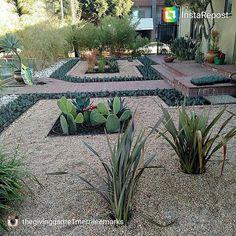 Merri  Lee  Marks  Landscape Design  #landscape #designs #plantpalettes #progress #droughttolerantplants #waterwisegardening #landscapearchitecture #gardenasart #gardening #green #grow #mindfulness #conservation #leeds #dwp #water #green #homegrown #rocks #peagravel #mexicanpebbles #succulents #cactus #flax #pavers by thegivinggame1merrileemarks #waterwise #waterwisegardening #drought #droughttolerant