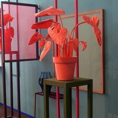 plant van vilt | interieur www.jmdinspireert.com
