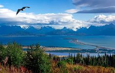 Homer, Alaska - It's a must see for everyone.