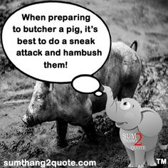 #sumthang2quote #quotes #quote #dailyquote #quoteoftheday #quoteaday #lol #laugh #laughter #lmao #fun #funnyquote #funnypic #veryfunny #funny #humor #comedy #silly #hilarious #pig #butcher #attack