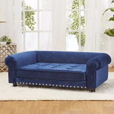 Found it at Wayfair - Manchester Velvet Tufted Dog Sofa with Cushion