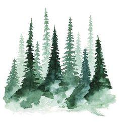 Watercolor art of pine trees