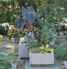 Paver planter