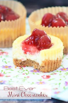 THE BEST recipe ever for Mini Cheesecakes! Cheesecake filling with graham cracker crust made in cupcake tins. My kids beg me to make these again and again!