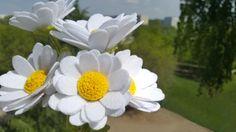 How to make FELT DAISY flowers. Ромашки из фетра