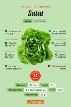 Das solltest du über Salat wissen | eatsmarter.de #salat #ernährung #infografik