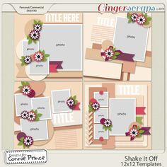 Shake It Off - 12x12 Temps (CU Ok) released Dec 2014 GAB from Designs by Connie Prince