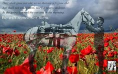 We will remember them. Remembrance Day Images, Remembrance Day Poppy, Memorial Day Pictures, Powerful Pictures, Flanders Field, Anzac Day, Lest We Forget, Poster Pictures, Open Window
