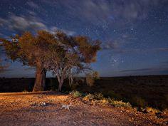 Night Landscape  Tanzania