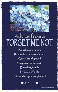 Growth Advice from a Forget Me Not: Bloom where you are planted! Your True Nature Advice Quotes, Me Quotes, Belief Quotes, Advice Cards, Friend Quotes, Qoutes, Positive Thoughts, Positive Quotes, Bloom Where You Are Planted