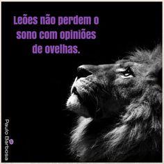 Leões não perdem o sono com opiniões de ovelhas. #sejaoleao #top #pbmmn #sucesso