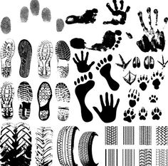 pA Set Of Black And White Footprints includes Animal footprints, Tire marks, Fingerprints, etc./p