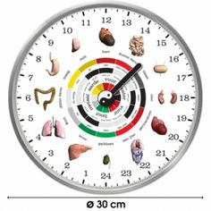 Čínské orgánové hodiny se nemýlí – zjistěte, který orgán vašeho těla nepracuje, jak má | OSUD.cz