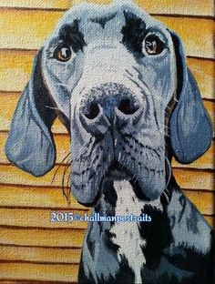 Great Dane custom pet portrait acrylic painting Write krischallman@gmail.com for your unique mothersday/fathersday/birthday/christmas gifts!!