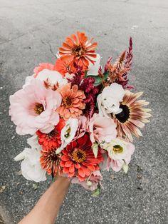 Flowers Nature, Fresh Flowers, Wild Flowers, Beautiful Flowers, Exotic Flowers, Purple Flowers, Flower Farm, My Flower, Cactus Flower