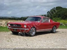 1964 Ford Mustang Fastback Coupé