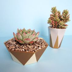 Gold Painted Geo Planters - http://www.diycraftsblog.com/gold-painted-geo-planters/ #Gold, #Painted, #Planters