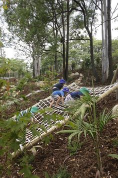 Wilderness Playground at Indooroopilly Montessori Children's House, QLD Kids Outdoor Play, Backyard For Kids, Backyard Projects, Outdoor Projects, Outdoor Fun, Steep Backyard, Backyard Landscaping, Sloped Backyard, Playground Design