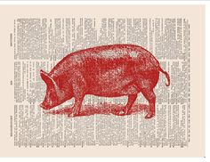 pig art printed on vintage dictionary paper