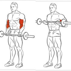 Best Of Biceps Exercises Part 7 - Healthy Fitness Arm Training