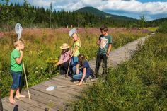 Für Kinder ist der Naturpark Almenland rund um die Teichalm ein Abenteuerspielplatz der besonderen Art. #almenland #naturparkalmenland #moorweg #teichalm Foto (c) Bergmann Pictures, Playground, Water Pond, Adventure, Round Round, Summer, Kids