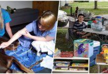 Egy amerikai gyermek minden játékát pénzzé tette kutyája gyógyulásának érdekében Picnic Blanket, Outdoor Blanket, Minden, Garden Projects, Ideas, Craft, Cement, America, Picnic Quilt