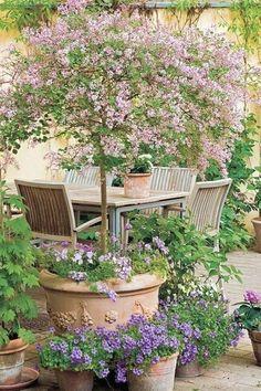 Small Flower Gardens, Small Courtyard Gardens, Small Courtyards, Courtyard Design, Patio Design, Plants For Small Gardens, Small Front Gardens, Diy Design, Design Jardin